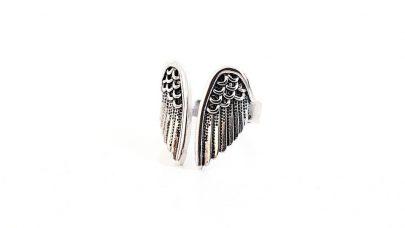Δαχτυλίδι με φτερά